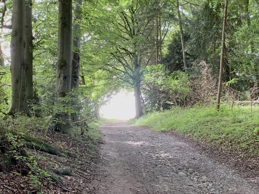 Wenn die spirituellen Stolpersteine aus dem Weg geräumt werden konnten, gleicht das einem Licht am Ende des Tunnels